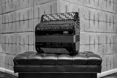 Luca Piovesan accordion